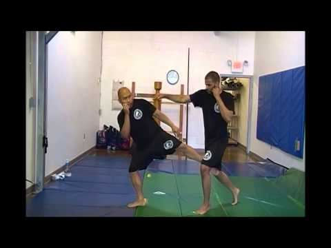 JKD - Cross Counter Using Shoulder Roll and Round Kick Image 1