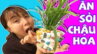 Bác Giúp Việc Vui Nhộn - Ăn Sỏi, Ăn Chậu Hoa ❤ Chị Hằng & Thái Chuối