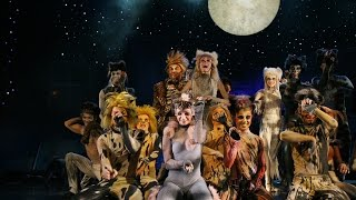 SPECTACLE MUSICAL THE CATS