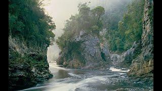 download lagu The Story Of The Tasmanian Dam Case gratis