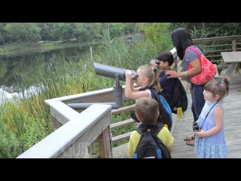 OC WARD MUSEUM OF WILDFOWL ART | Family Activities | Salisbury, MD