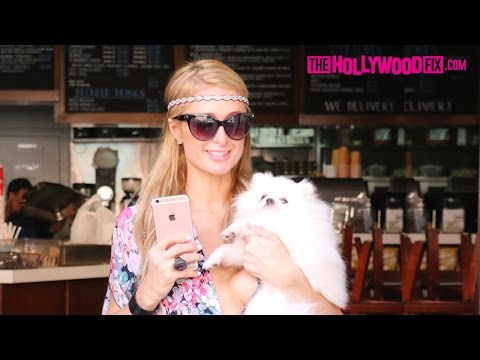Paris Hilton Shops At Anastasia Beverly Hills With Her Dog 'Princess Paris' 4.21.16