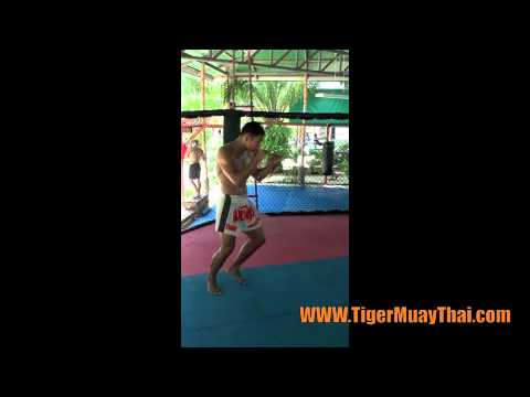 Tiger Muay Thai: Stance, Balance, and movement technique Image 1