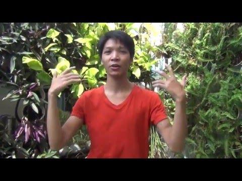 Vietnam's Got Talent 2014 - Quốc Bảo hé lộ tiết mục BK5