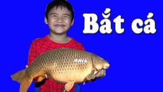 Bé Dương bắt cá trong bể ❤ Kênh Em Bé❤