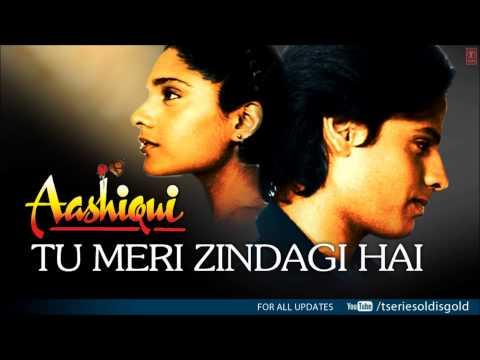 Tu Meri Zindagi Hai Full Song (Audio) | Aashiqui | Rahul Roy, Anu Agarwal thumbnail