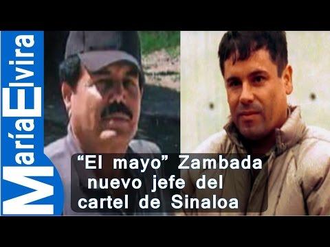 El mayo Zambada nuevo jefe del cartel de Sinaloa #mariaelvira.