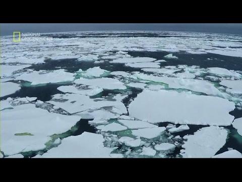 Антарктика. Документальный фильм - 2 (Не предназначена для людей)