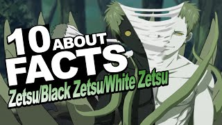 10 Facts About Zetsu/Black Zetsu/White Zetsu You Should Know!!! w/ ShinoBeenTrill