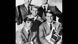 Vídeo 355 de Beach Boys