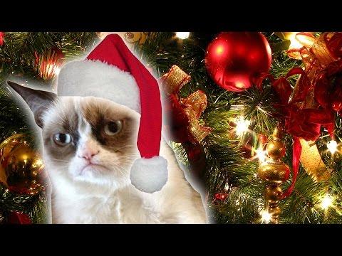 Grumpy Cat's Worst Christmas Ever trailer   DAILY REHASH   Ora TV