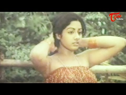 Indian Actress Sridevi's Spicy Video From Her First Movie video