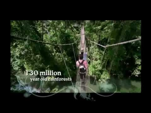 Eco Vacation In Malaysia - Visit Malaysia Song video