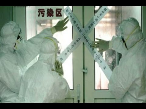 China's Official Bird Flu Reports Start to Raise Questions