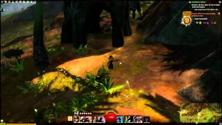 Guild Wars 2 - Server List, Stress Test & Release Times!!!