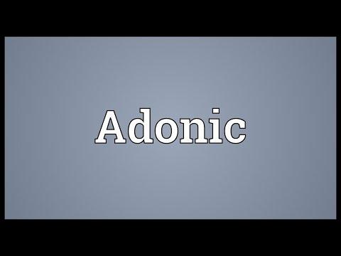 Header of Adonic