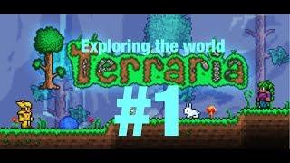 terraria gameplay Mac part 1 (exploring the world)
