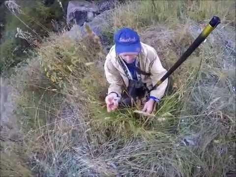 рыбалка в северной осетии видео