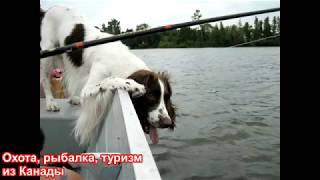 Трейлер канала Охота, рыбалка, туризм из Канады