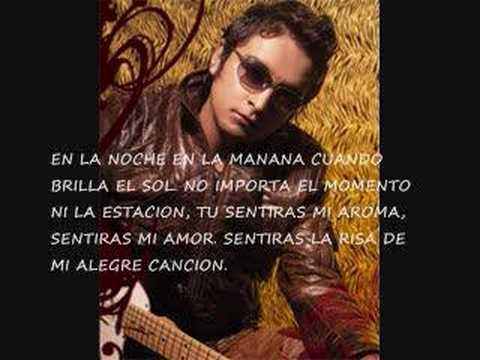 Alex Campos- Cuidare de ti