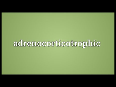 Header of adrenocorticotrophic