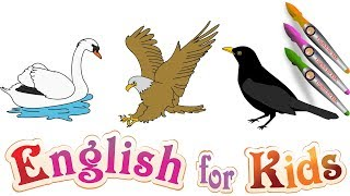 English for kids : How to draw a Swan – Eagles – Crow