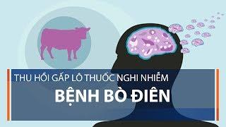 Thu hồi gấp lô thuốc nghi nhiễm bệnh bò điên | VTC1