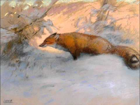 Janáček: The Cunning Little Vixen - Orchestral Suite from the Opera