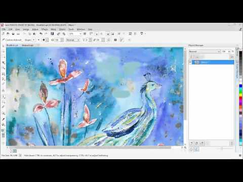 Brushes and Liquid Tools in Corel® PHOTO PAINT™