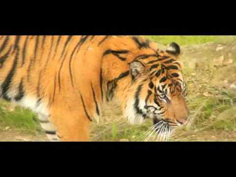 MAHARASHTRA :- Tourism Information of Maharashtra