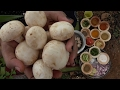HEALTHY FUNGI | FANTASTIC FUNGUS RECIPE | VILLAGE FOOD | MUSHROOM MASALA |