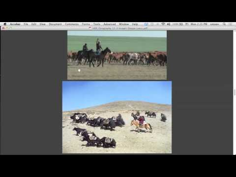 Geography 5/11 Steppe and Nomads