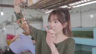 Hari Won - Siêu Ham Ăn - Hải Sản Bibo (Phan Thiết) (Korean/English/VN Subtitles)