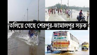 তলিয়ে গেছে শেরপুর-জামালপুর সড়ক ! সারাদেশে যোগাযোগ বিছিন্ন । জেনে নিন Latest Flood News 2017