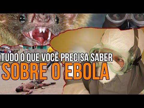 Tudo o que você precisa saber sobre o Ebola