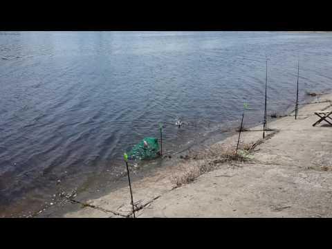 Волжская гэс. Рыбалка на канале