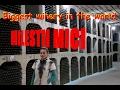 Biggest Winery in the world: MILEŞTII MICI in Moldova
