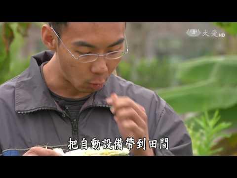 台灣-小人物大英雄