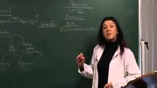 9 Sınıf Biyoloji Canlıların Temel Bileşikleri Konu Anlatımı - Konu Anlatımı