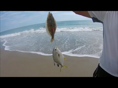 Surf fishing emerald isle beach north carolina sept 21 for Nc surf fishing report