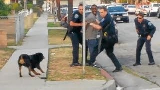 Police Shoot and Kill Dog in Front of Owner (Graphic Video) 7/3/13