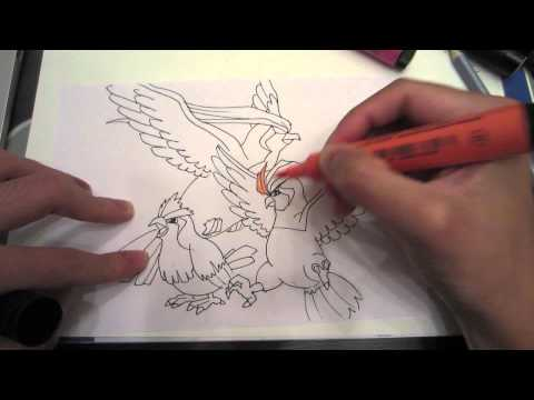 How to draw Pokemon: No.14 Pidgey, No.15 Pidgeotto, No.16 Pidgeot