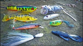 ROULETTE Lure Fishing CHALLENGE -- Texas Bass Battle