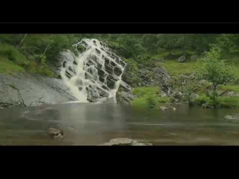 The Invisible World -  Salmon & Trout Conservation UK