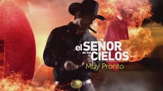 Las mejores 5 series de narcos 2017/18