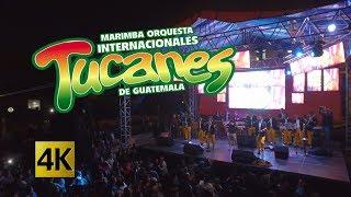 Internacionales Tucanes - Concierto Volando Sin Fronteras 4K