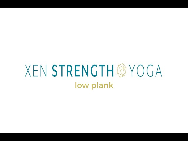 Xen Strength Plank Pose Alignment Instruction  (yoga with weights)