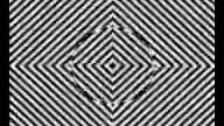 2008Dec2 Illusion Hallucination video 3gpp