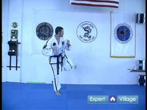 Beginner Tae Kwon Do Techniques : Tae Kwon Do Back Piercing Kick Image 1