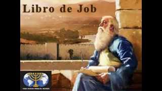 Armando Alducin Job 12  Perversiones teologicas